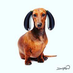 The dog... 🐕 #patlıcan #dachshund #dog #eggplant #draw #çizim #objectart #objeart #instagram #instaart #minimalism #finearts #idea #creative #tagforlikes #illustration #collage #kolaj #simplycooldesign #bizarreart1 #artoftheday #design #doodle #sketch #vscocam #artwork #funny #artistsoninstagram #idea_in_picture #digitalart