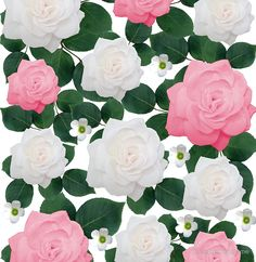 Peach-Pink and White Rose Floral Design