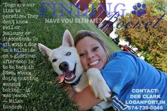 PLEASE SHARE! Help find Rocket, an all-white #Siberian #Husky who was taken from his family's yard May 10/13 Cass Co/Miami Co line (500 W) #Indiana. Rocket has one blue eye and one brown eye. He was wearing a collar with a Red Aztec design with Cass County Animal Hospital tags. No MC. If you have any information on Rocket, please call 574-721-9852. A community page has been set up; please share this site: https://www.facebook.com/FindingRocket A reward is offered for his safe return!