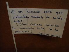 El ser humano...