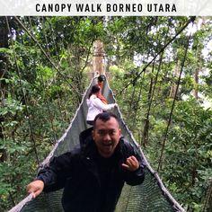 Canopy walk kinabalu