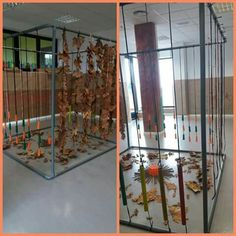 Reggio Emilia, Classroom Setup, Early Childhood, Ideas Para, Projects To Try, Environment, Furniture, Home Decor, Baby