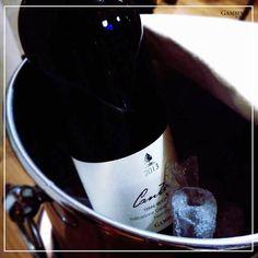 """E' una notte senza luna..Ubriaco canta amore"" ""A timeless night with our Gambino Vini"" #winewednesday #gambinovini #wine  #vino #wine #etna #winelover #instasicilia #instasicily #igsicilia #vineyard #sicilia #sicily #winery #vigneto #winerytour #g"