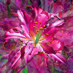 Star Gazing Stargazer #Lily mixed media painting by Michele Avanti  #flowers  My favorite flower captured and painted and then repainted with dozens of layers till I was happy with the outcome. Hope you enjoy it!