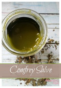 Pin3K Stumble4 Share592 Tweet Yum +120 Share4 Share Reddit Email All posts may contain affiliate links, which won't cost you any more to purchase, but does help support this site. Comfrey is an amazing herb. It has anti-inflammatory, analgesic and decongestant properties that make it a must have for many home herbal apothecaries. I like…   [read more]