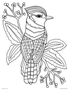 Free Coloring Page Of Fish Free Coloring Page Of Fish. Free Coloring Page Of Fish. Free Coloring Pages for Adults to Print Coloring Pages in fish coloring page Free Coloring Pages For Adults To Print Coloring Pages Planet Coloring Pages, Coloring Pages Nature, Angel Coloring Pages, Space Coloring Pages, Lego Coloring Pages, Farm Animal Coloring Pages, Summer Coloring Pages, Fish Coloring Page, Easter Coloring Pages