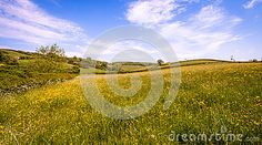 Part of the beautiful West Country. A view across the valley with the field in…