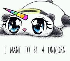 Panda unicorn                                                                                                                                                     More
