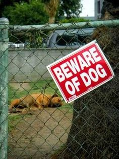Beware of Dog...  He's hard core after nappy time...