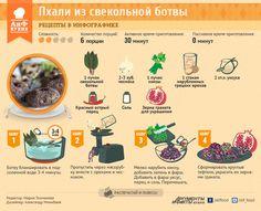 Пхали из свекольной ботвы | Рецепты в инфографике | Кухня | Аргументы и Факты