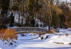 Arched Bridge in Edwards Gardens in Toronto Canada. Edwards Gardens is one of a series of public parks that connect together to form many miles of walkways and sports facilities around the Toronto area. Arch Bridge, Toronto Canada, Walkways, Fine Art America, Parks, Connect, Public, Gardens, Canning