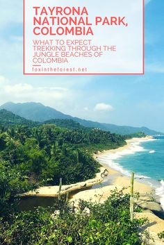 Are you interested in an adventurous trip to the jungles of Colombia? Tayrona National Park combines jungle and beach on this adventure-lovers paradise. However, we found that most bloggers don't give the whole story. Find out what surprised us most about Tayrona National Park with these handy tips. Colombia Travel | Colombia Hiking | Jungle Trekking in Colombia | South American Travel