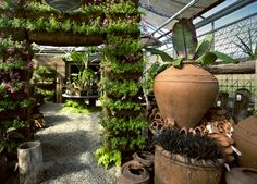 Terrain at Styer's, outside of Philly, is Anthropologie's plant nursery / garden center / home store / cafe. Worth a visit!