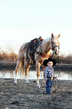 Well Trained Horse & Little Cowboy