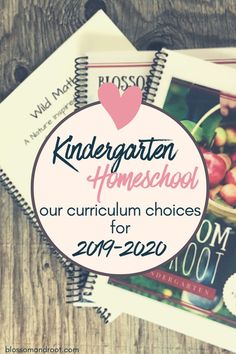 Our Homeschool Kindergarten Curriculum Choices 2019 – 2020 Kindergarten Blogs, Waldorf Kindergarten, Homeschooling First Grade, Kindergarten Homeschool Curriculum, Catholic Homeschooling, Online Homeschooling, Preschool Schedule, Reading Lessons, Guided Reading