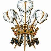 Princes Trust - Prince of Wales * Princess Diana + Prince William + Prince Harry