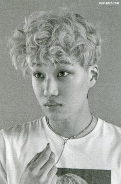Kai Exo Kai, Chanyeol, Exo Lucky One, Photo Scan, Exo Album, Gifs, Kim Min Seok, Do Kyung Soo, Exo Memes