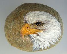 Hand Painted Rock - Bald Eagle