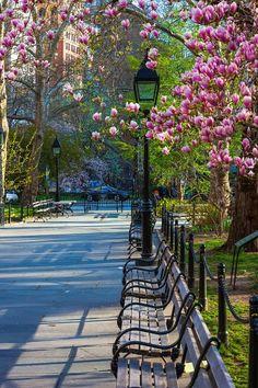 The City That Never Sleeps, New York