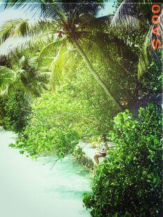 Maldives. Wanna go again!
