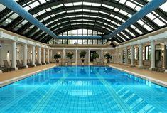 Indoor swimming pool luxus  luxus pool ein luxus pool im garten | Luxuriöse Designs von Pool ...