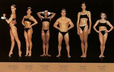 New York-based photographer Howard Schatz captures the diverse range of body types of Olympic athletes. Referring to a body as an athletic build is often Body Reference, Anatomy Reference, Art Reference, Female Reference, Character Reference, Reference Images, Character Concept, Concept Art, Vinyasa Yoga