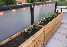 easy diy planter box - How To Make Wooden Planter Boxes Waterproof? – Garden Design