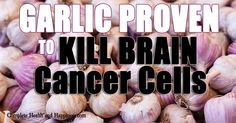 Love garlic! Love it even more now that it's proven to kill brain cancer cells!