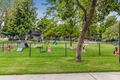 We love our residents and we're sure they'll love frolicking in our park! Rancho Cucamonga, Dog Park, Golf Courses, Vineyard, Sidewalk, Tours, Dog Playground, Playpen For Dogs, Walkways