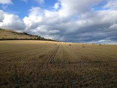 Cley Hill near Frome, Somerset.