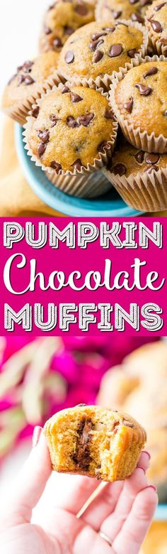 These Pumpkin Muffins are loaded with chocolate chips and spices for a fall breakfast, treat, or snack the whole family will love! via @sugarandsoulco