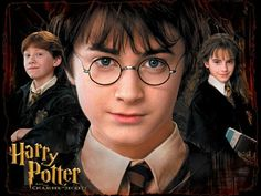 Ignore the picture its not the link go to this link for book suggestions if you loved Harry Potter! https://www.goodreads.com/list/show/11097.If_You_Like_Harry_Potter_You_Might_Like_