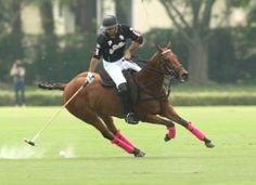 Adolofo Cambiaso |Two BLOCKBUSTER matches Tomorrow - | Polo Pony