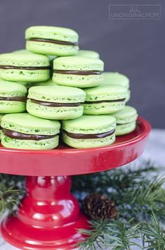 Mint Chocolate Macarons - mint flavored shell filled with chocolate mint ganache. Perfect for Christmas! Chocolate Triffle Recipe, Chocolate Ganache Filling, Mint Chocolate Chips, Chocolate Recipes, Chocolate Roulade, Chocolate Smoothies, Chocolate Shakeology, Chocolate Drizzle, Macarons