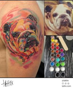 Valerio Serpetti - Teo the Bulldog | tattrx