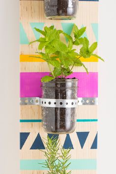 Make a colorful herb garden for your indoor or outdoor space with this easy home improvement DIY project.