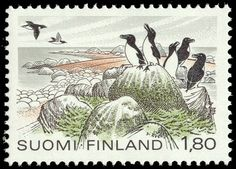 Postage stamp depicting razorbills living in Finland