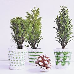 Last week on Christmas market I bought 3 little trees and I thought I should crochet some cozy planters for them. Try to make some too!
