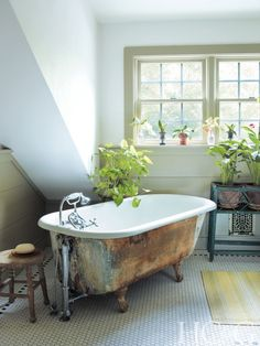 Plants appear in profusion throughout the house, even in the master bath, which features a vintage claw foot tub.