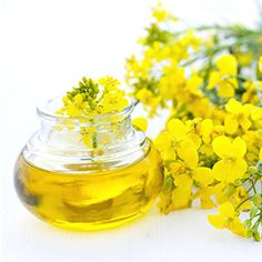 Rapeseed oil benefits: High in the heart healthy mono & polyunsaturated fats omega 6 and 9 It is also a rich source of vitamin E, a natural antioxidant. Diabetes, Healthy Oils, Healthy Cooking, Healthy Facts, Omega 3, Omega Oils, What Is Canola Oil, Vitamin E, Olives
