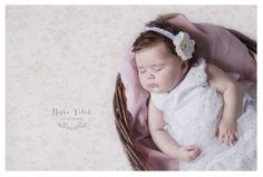 Ruby - 4 months — Hello Petal Photography