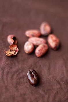 Believe it or not, cacao beans have a long history of magical use in south and latin america. I recommend an ounce daily to strengthen your psychic powers. Chocolate Sweets, Chocolate Lovers, Chocolate Cookies, Raw Vegan Desserts, Raw Food Recipes, Just Desserts, History Of Chocolate, Fairy Food, Cocoa Nibs