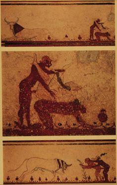 Tomb of the Bulls copulation scenes 540 BC Tarquinia Ancient Rome, Ancient Art, Wolf Eyes, Erotic Photography, Pompeii, Pulp Fiction, Erotic Art, Dark Art, Female Art