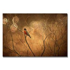 Trademark Fine Art The Robin by Lois Bryan Canvas Wall Ar... https://www.amazon.com/dp/B00BM6Y1MO/ref=cm_sw_r_pi_dp_x_7Y3oyb3H0FF8H