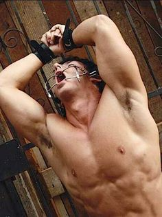 Gay Muscle Bdsm Tumblr