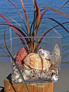 SHELL BEACH DECOR arrangement in glass, coastal decor, nautical decor