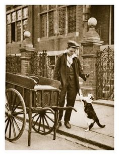 'Many visitors came to the streets…the muffin man and Cats' Meat Man. The latter carried their wares on long skewers over their shoulders. The smell drew all the strays.'    (A London resident writing in 1920.)