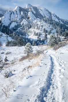 Winter hiking in the Flatirons (Colorado) by Cameron Miller
