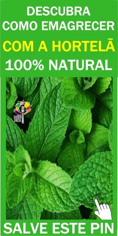 Dieta natural Health Remedies, Diabetes, Food And Drink, Dieta Fitness, Nature, Blog, Diet To Lose Weight, Spearmint Recipes, Peppermint Oil Hair