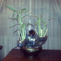 fuente de agua y bambu feng shui
